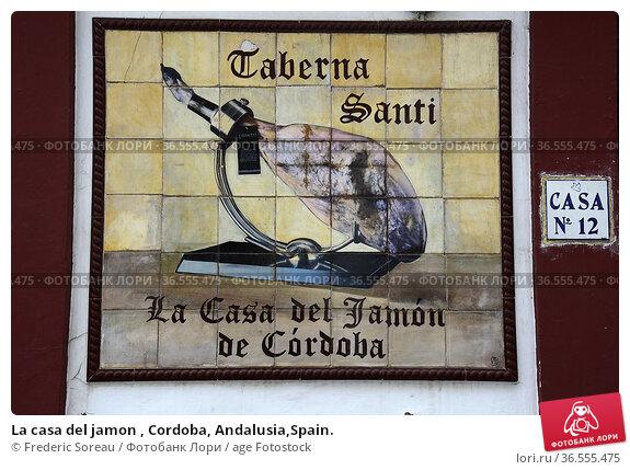 La casa del jamon , Cordoba, Andalusia,Spain. Стоковое фото, фотограф Frederic Soreau / age Fotostock / Фотобанк Лори