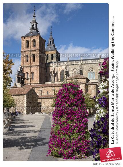 La Catedral de Santa María de Astorga, Spain. Walking the Camino. ... Стоковое фото, фотограф Andre Maslennikov / age Fotostock / Фотобанк Лори