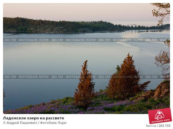 Купить «Ладожское озеро на рассвете», фото № 283159, снято 3 июня 2007 г. (c) Андрей Пашкевич / Фотобанк Лори