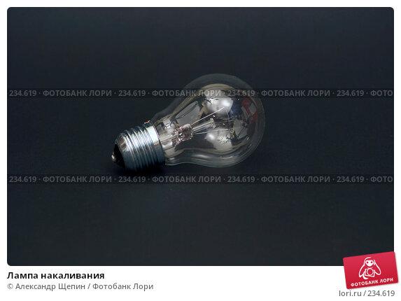 Купить «Лампа накаливания», эксклюзивное фото № 234619, снято 26 марта 2008 г. (c) Александр Щепин / Фотобанк Лори