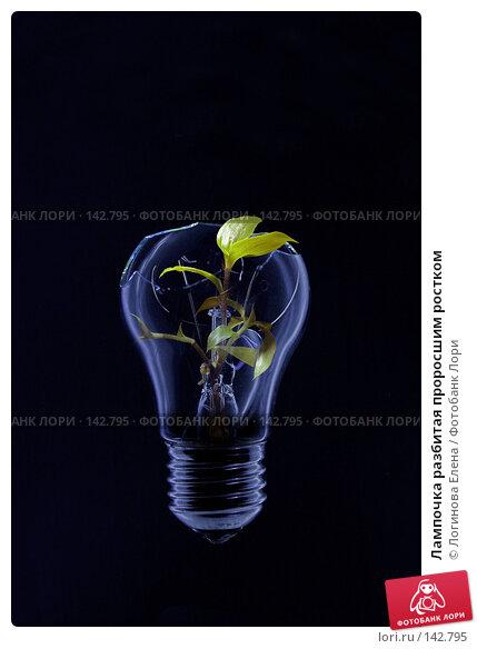 Лампочка разбитая проросшим ростком, фото № 142795, снято 4 декабря 2016 г. (c) Логинова Елена / Фотобанк Лори