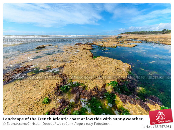 Landscape of the French Atlantic coast at low tide with sunny weather. Стоковое фото, фотограф Zoonar.com/Christian Decout / easy Fotostock / Фотобанк Лори