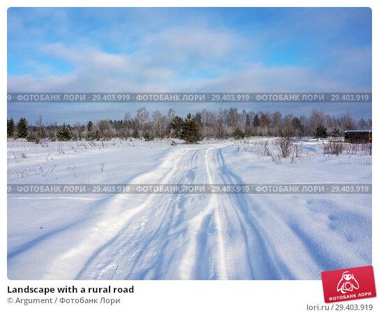 Купить «Landscape with a rural road», фото № 29403919, снято 25 января 2013 г. (c) Argument / Фотобанк Лори