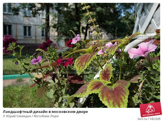 Ландшафтный дизайн в московском дворе, фото № 143035, снято 7 сентября 2007 г. (c) Юрий Синицын / Фотобанк Лори