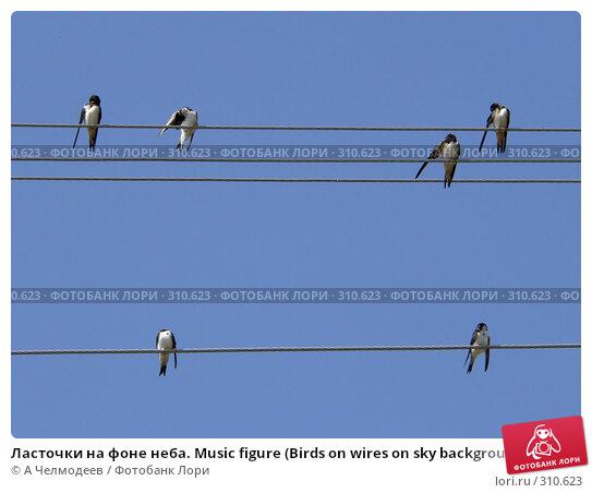 Ласточки на фоне неба. Music figure (Birds on wires on sky background), фото № 310623, снято 27 июня 2006 г. (c) A Челмодеев / Фотобанк Лори