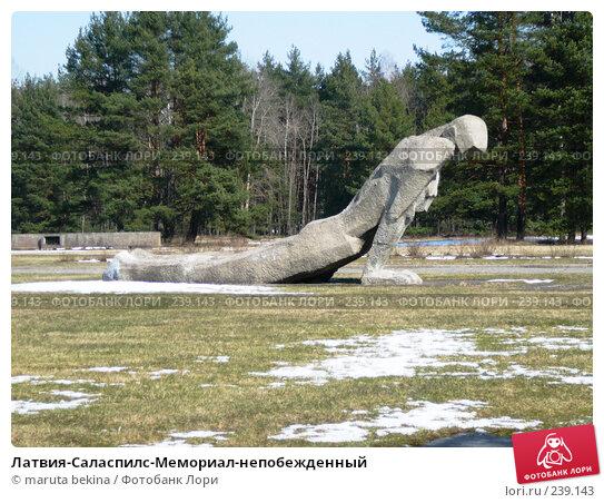 Купить «Латвия-Саласпилс-Мемориал-непобежденный», фото № 239143, снято 29 марта 2008 г. (c) maruta bekina / Фотобанк Лори