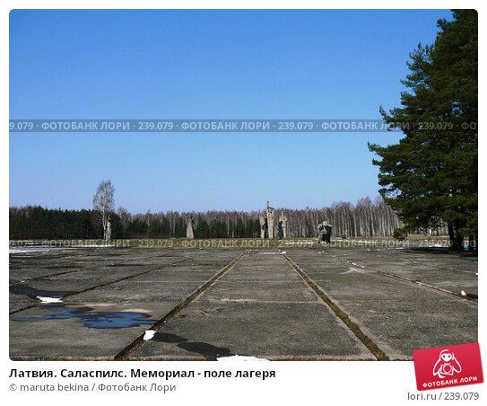 Латвия. Саласпилс. Мемориал - поле лагеря, фото № 239079, снято 29 марта 2008 г. (c) maruta bekina / Фотобанк Лори