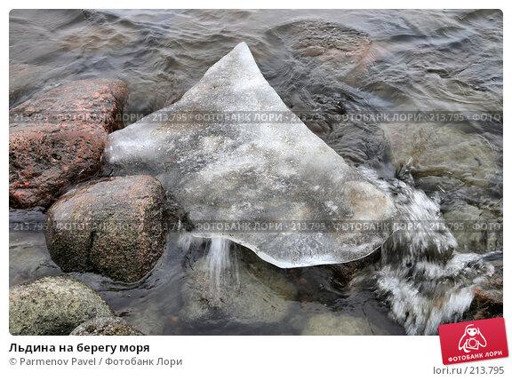 Льдина на берегу моря, фото № 213795, снято 13 февраля 2008 г. (c) Parmenov Pavel / Фотобанк Лори