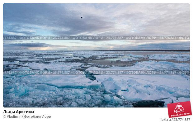 Купить «Льды Арктики», фото № 23774887, снято 12 сентября 2016 г. (c) Vladimir / Фотобанк Лори