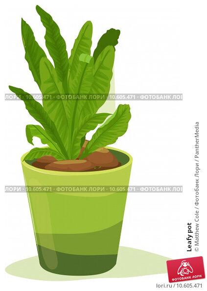 Leafy pot. Стоковая иллюстрация, иллюстратор Matthew Cole / PantherMedia / Фотобанк Лори