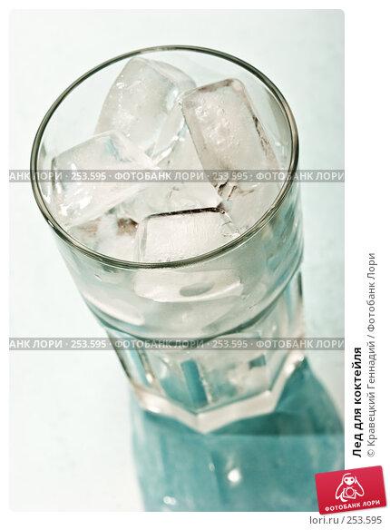 Лед для коктейля, фото № 253595, снято 2 октября 2005 г. (c) Кравецкий Геннадий / Фотобанк Лори