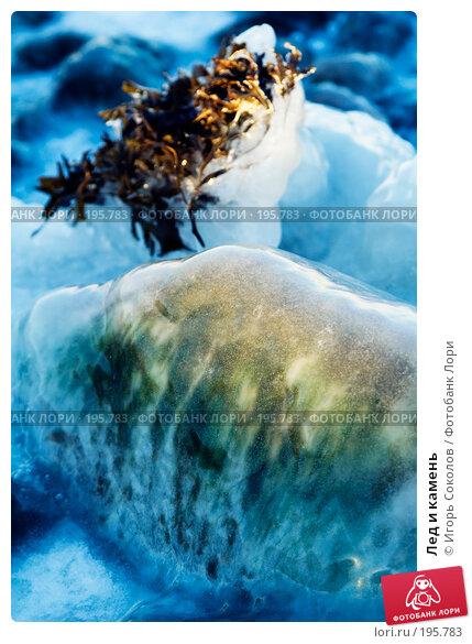 Лед и камень, фото № 195783, снято 5 января 2008 г. (c) Игорь Соколов / Фотобанк Лори
