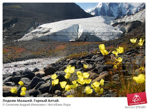 Ледник Маашей. Горный Алтай., фото № 279091, снято 13 июля 2006 г. (c) Селигеев Андрей Иванович / Фотобанк Лори