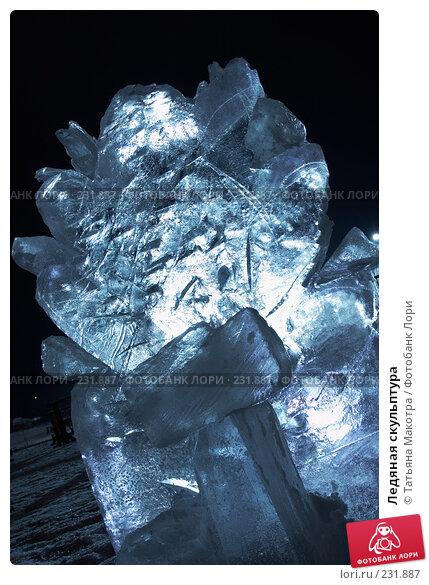 Купить «Ледяная скульптура», фото № 231887, снято 27 декабря 2007 г. (c) Татьяна Макотра / Фотобанк Лори