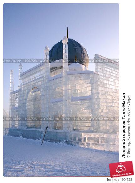 Ледяной городок.Тадж-Махал, фото № 190723, снято 23 января 2008 г. (c) Виктор Ковалев / Фотобанк Лори