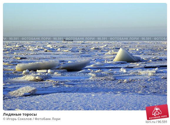 Ледяные торосы, фото № 90591, снято 18 января 2017 г. (c) Игорь Соколов / Фотобанк Лори