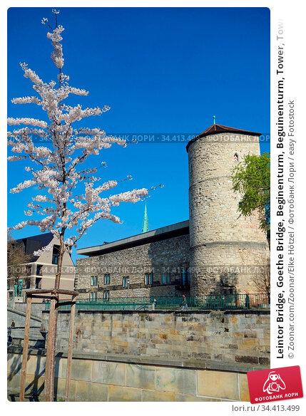 Leintor Bridge, Goethe Bridge, Beginenturm, Beguinenturm, Tower, Town... Стоковое фото, фотограф Zoonar.com/Zoonar/Elke Hötzel / easy Fotostock / Фотобанк Лори