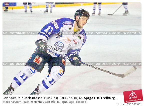 Lennart Palausch (Kassel Huskies) - DEL2 15-16, 46. Sptg.: EHC Freiburg... Стоковое фото, фотограф Zoonar.com/Joachim Hahne / age Fotostock / Фотобанк Лори