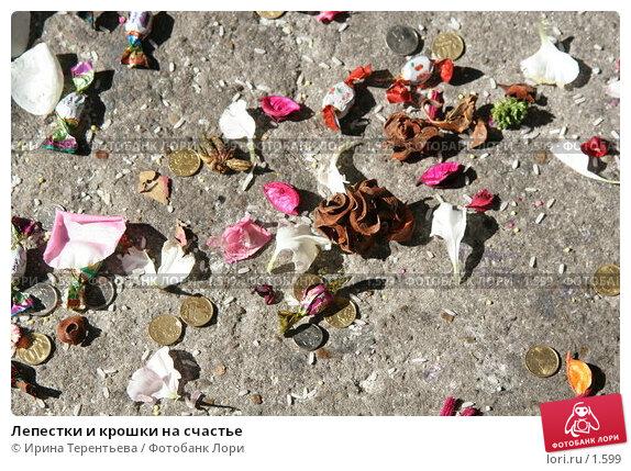 Лепестки и крошки на счастье, эксклюзивное фото № 1599, снято 10 сентября 2005 г. (c) Ирина Терентьева / Фотобанк Лори
