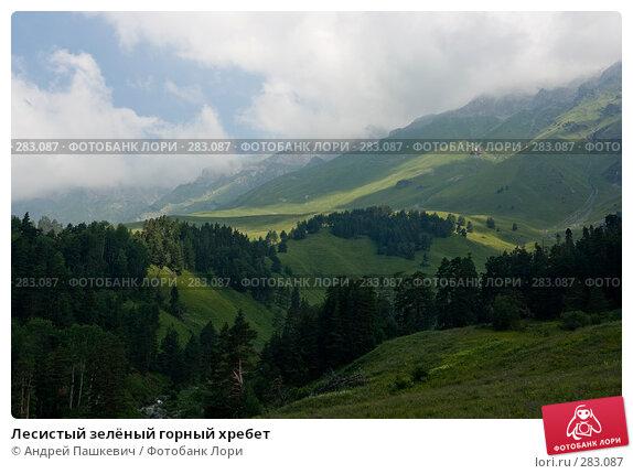 Лесистый зелёный горный хребет, фото № 283087, снято 23 июля 2007 г. (c) Андрей Пашкевич / Фотобанк Лори