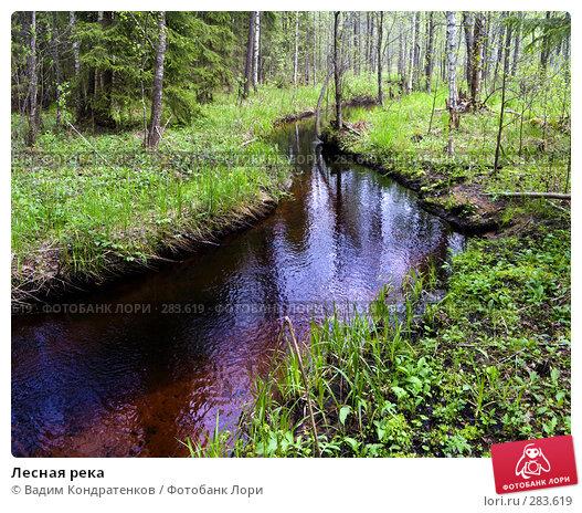 Купить «Лесная река», фото № 283619, снято 22 апреля 2018 г. (c) Вадим Кондратенков / Фотобанк Лори