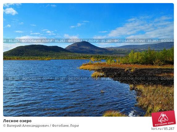 Купить «Лесное озеро», фото № 85287, снято 20 апреля 2018 г. (c) Валерий Александрович / Фотобанк Лори