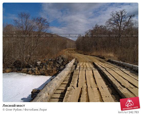 Купить «Лесной мост», фото № 242783, снято 29 марта 2008 г. (c) Олег Рубик / Фотобанк Лори