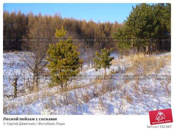 Лесной пейзаж с соснами, фото № 132567, снято 25 ноября 2007 г. (c) Сергей Девяткин / Фотобанк Лори