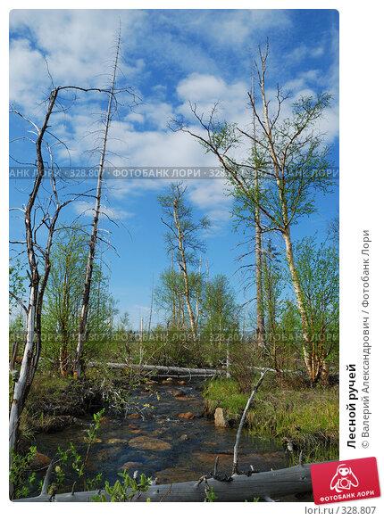 Лесной ручей, фото № 328807, снято 19 июня 2008 г. (c) Валерий Александрович / Фотобанк Лори