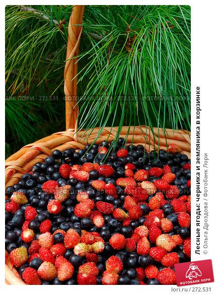 Лесные ягоды: черника и земляника в корзинке, фото № 272531, снято 11 июля 2005 г. (c) Ольга Дроздова / Фотобанк Лори