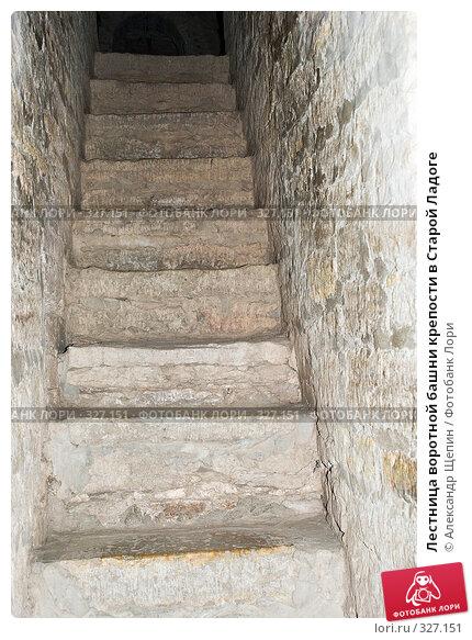 Купить «Лестница воротной башни крепости в Старой Ладоге», эксклюзивное фото № 327151, снято 17 мая 2008 г. (c) Александр Щепин / Фотобанк Лори