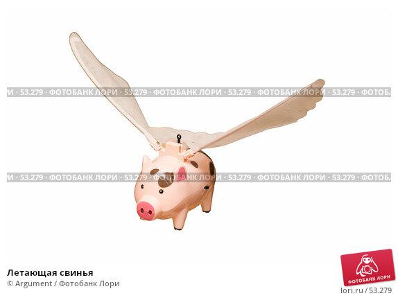 Летающая свинья, фото № 53279, снято 23 января 2017 г. (c) Argument / Фотобанк Лори