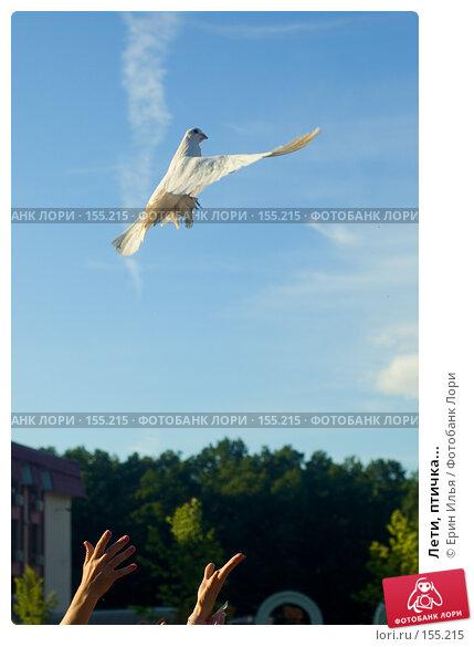 Лети, птичка..., фото № 155215, снято 18 июля 2007 г. (c) Ерин Илья / Фотобанк Лори