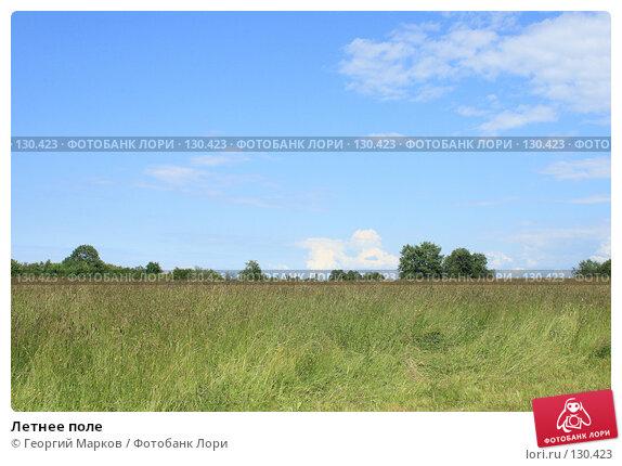 Купить «Летнее поле», фото № 130423, снято 1 июля 2007 г. (c) Георгий Марков / Фотобанк Лори