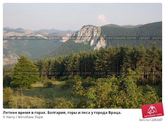 Летнее время в горах. Болгария, горы и леса у города Враца., фото № 228647, снято 19 августа 2007 г. (c) Harry / Фотобанк Лори
