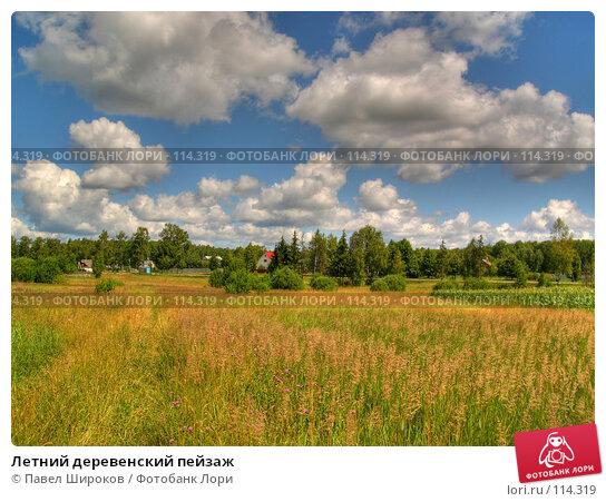 Летний деревенский пейзаж, эксклюзивное фото № 114319, снято 21 июля 2017 г. (c) Павел Широков / Фотобанк Лори