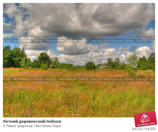 Купить «Летний деревенский пейзаж», эксклюзивное фото № 114323, снято 19 апреля 2018 г. (c) Павел Широков / Фотобанк Лори