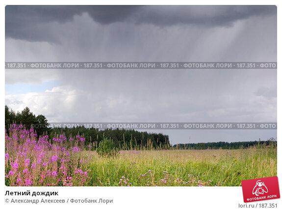 Летний дождик, эксклюзивное фото № 187351, снято 19 июля 2006 г. (c) Александр Алексеев / Фотобанк Лори