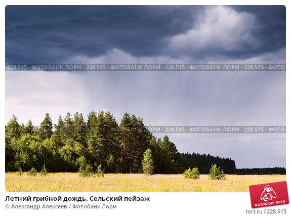 Летний грибной дождь. Сельский пейзаж, эксклюзивное фото № 228515, снято 19 июля 2006 г. (c) Александр Алексеев / Фотобанк Лори