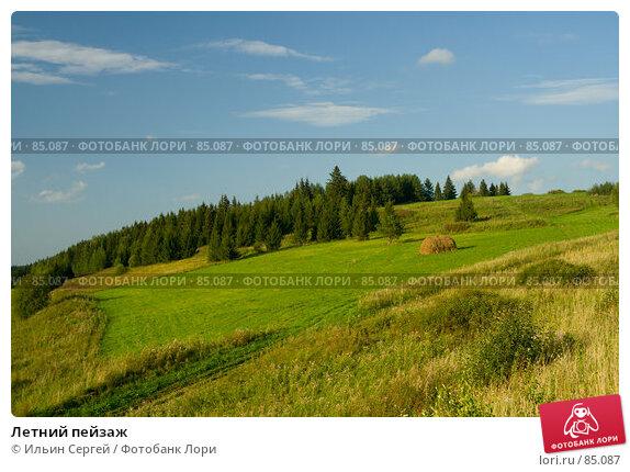 Летний пейзаж, фото № 85087, снято 26 августа 2007 г. (c) Ильин Сергей / Фотобанк Лори
