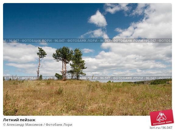 Купить «Летний пейзаж», фото № 96047, снято 2 июля 2006 г. (c) Александр Максимов / Фотобанк Лори