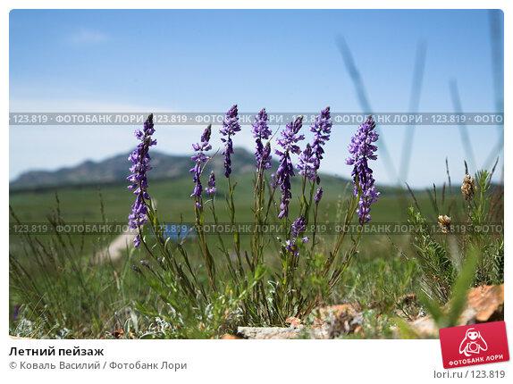 Летний пейзаж, фото № 123819, снято 25 мая 2007 г. (c) Коваль Василий / Фотобанк Лори