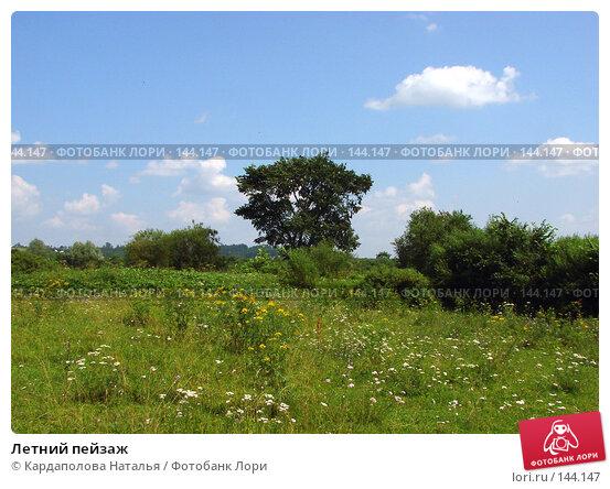 Купить «Летний пейзаж», фото № 144147, снято 15 июля 2007 г. (c) Кардаполова Наталья / Фотобанк Лори