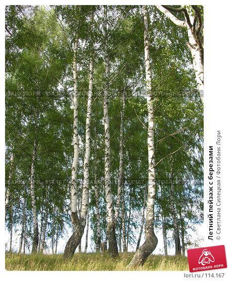 Летний пейзаж с березами, фото № 114167, снято 21 июля 2007 г. (c) Светлана Силецкая / Фотобанк Лори