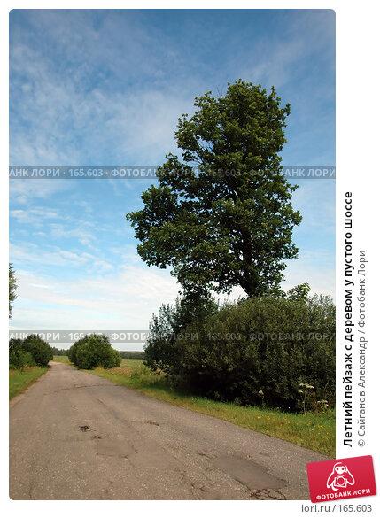 Летний пейзаж с деревом у пустого шоссе, эксклюзивное фото № 165603, снято 28 июля 2007 г. (c) Сайганов Александр / Фотобанк Лори