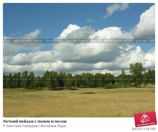 Купить «Летний пейзаж с полем и лесом», фото № 114163, снято 21 июля 2007 г. (c) Светлана Силецкая / Фотобанк Лори