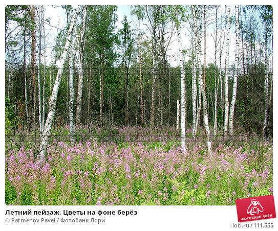 Купить «Летний пейзаж. Цветы на фоне берёз», фото № 111555, снято 16 июля 2006 г. (c) Parmenov Pavel / Фотобанк Лори