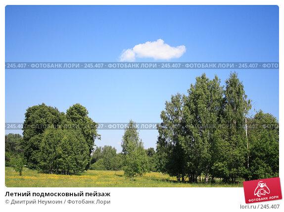 Летний подмосковный пейзаж, эксклюзивное фото № 245407, снято 20 июня 2006 г. (c) Дмитрий Неумоин / Фотобанк Лори