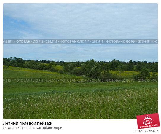 Летний полевой пейзаж, фото № 236615, снято 11 июня 2007 г. (c) Ольга Хорькова / Фотобанк Лори