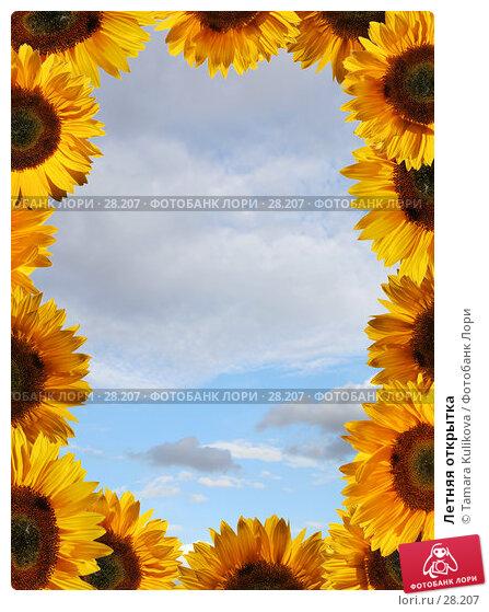 Купить «Летняя открытка», фото № 28207, снято 30 июля 2006 г. (c) Tamara Kulikova / Фотобанк Лори